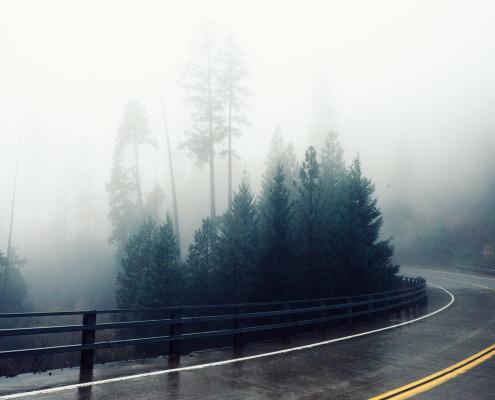road-fog-bend-foggy